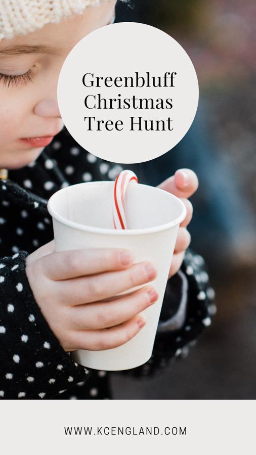 greenbluff-wa-christmas-tree-hunt.jpg