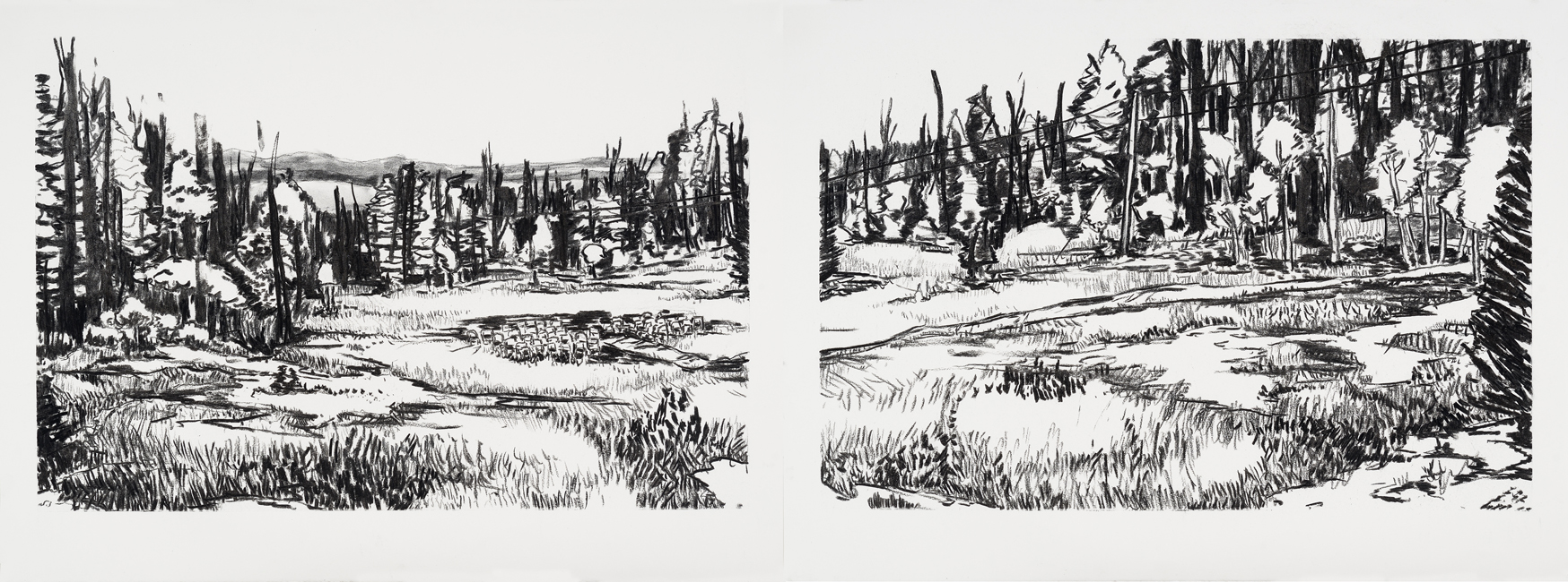 "Meadow, 22"" x 30"" (x 2), charcoal on paper, 2014"
