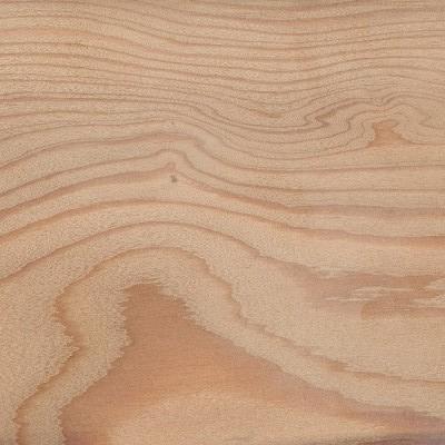 european-larch-grain+section+.jpg