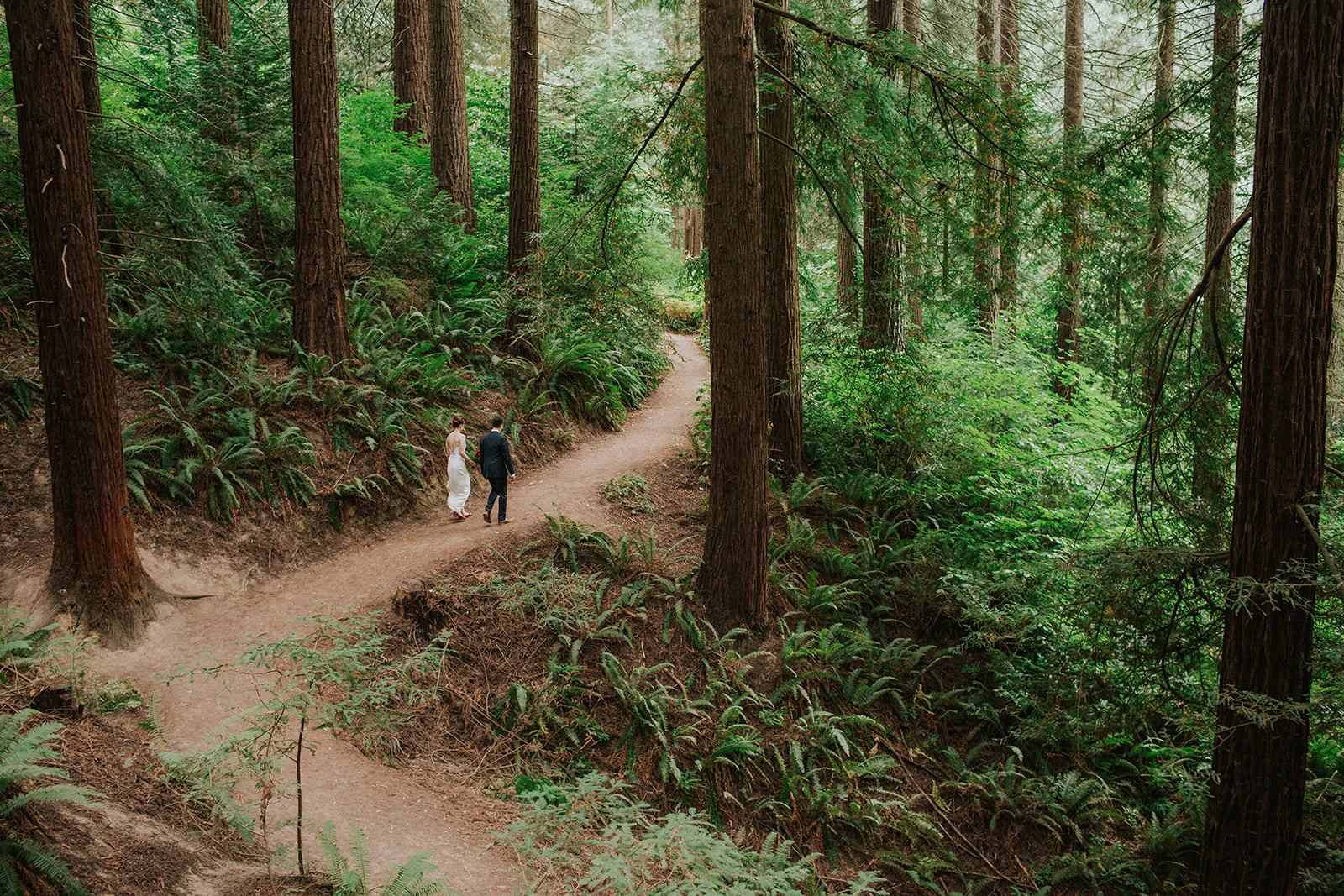 Forest-Park-bride-grom-trail-walk.jpg
