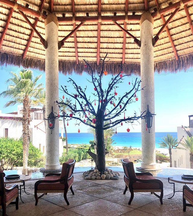 Last day in Mexico spent at this stunner. 🥰🇲🇽 @lasventanasalparaiso @rosewoodhotels @thesmartflyer #ctbtravel