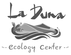 cropped-cropped-cropped-laduna-logo-ws.png