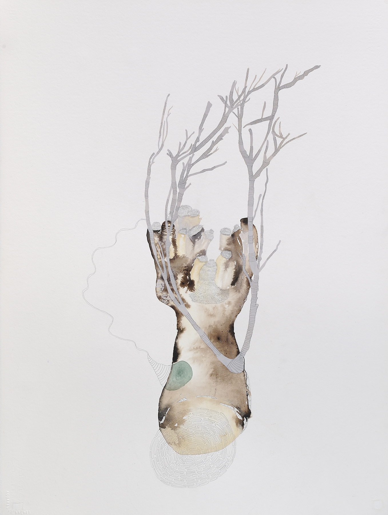 "Roundup Unready, gouache, graphite on paper, 30"" x 22"", 2010"