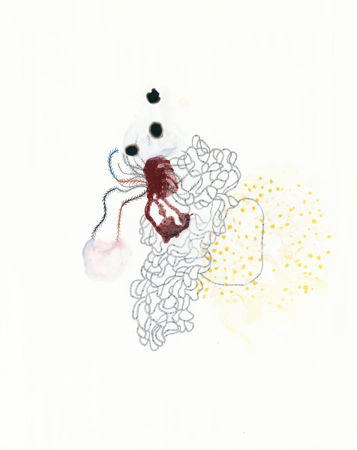 "Specimen-10, gouache, ink, graphite on Yupo, 14"" x 11"", 2013"