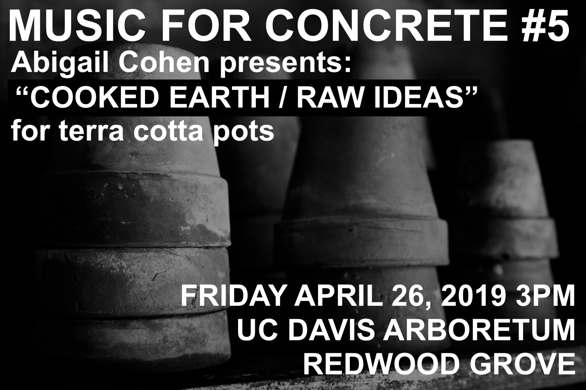 MF5 cooked earth raw ideas flyer.jpg