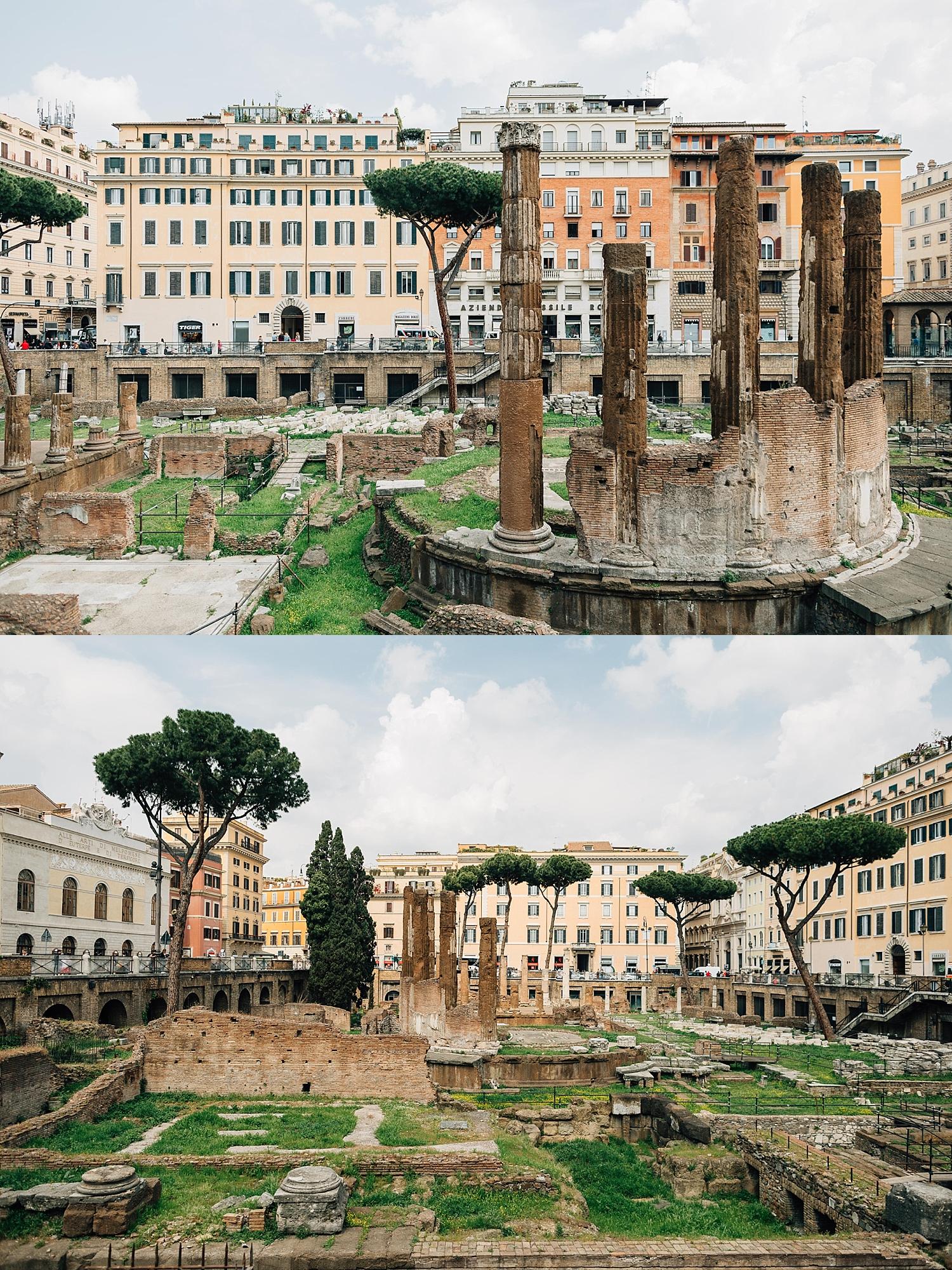 The Roman Cat Sanctuary