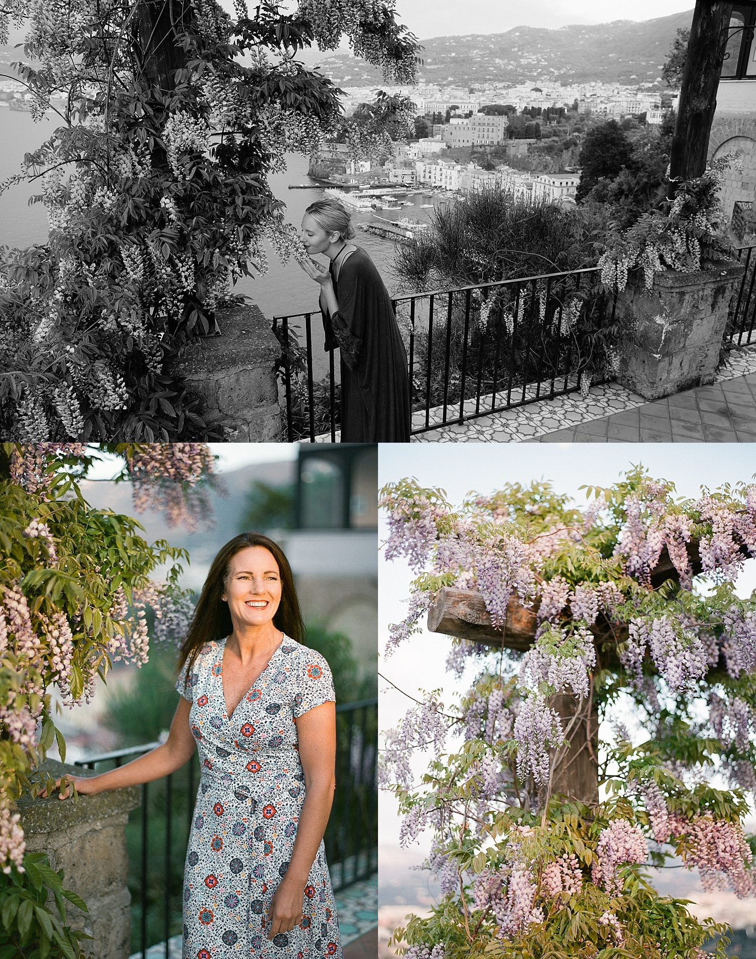 Wisteria in bloom (our terrace, it's huge!)