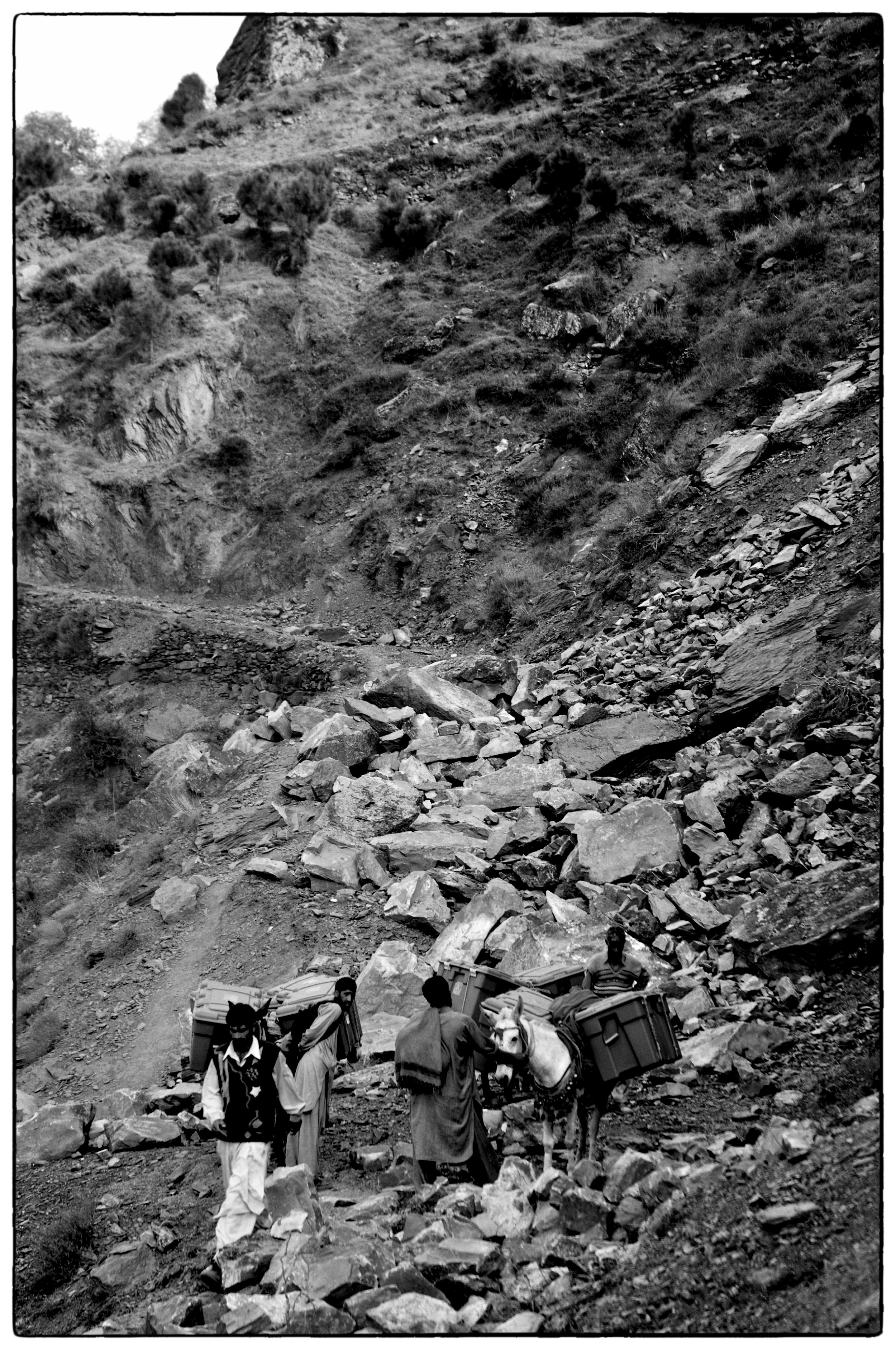 Mules carrying aid thousands of feet above Balakot, NWFP, Pakistan, November 8, 2005. (Photo / Mark Pearson) The massive October earthquake in Kashmir affected one of the highest and most remote places on earth. Difficult terrain slowed the relief effort and the largest scale humanitarian air operations since the Berlin blockade began.