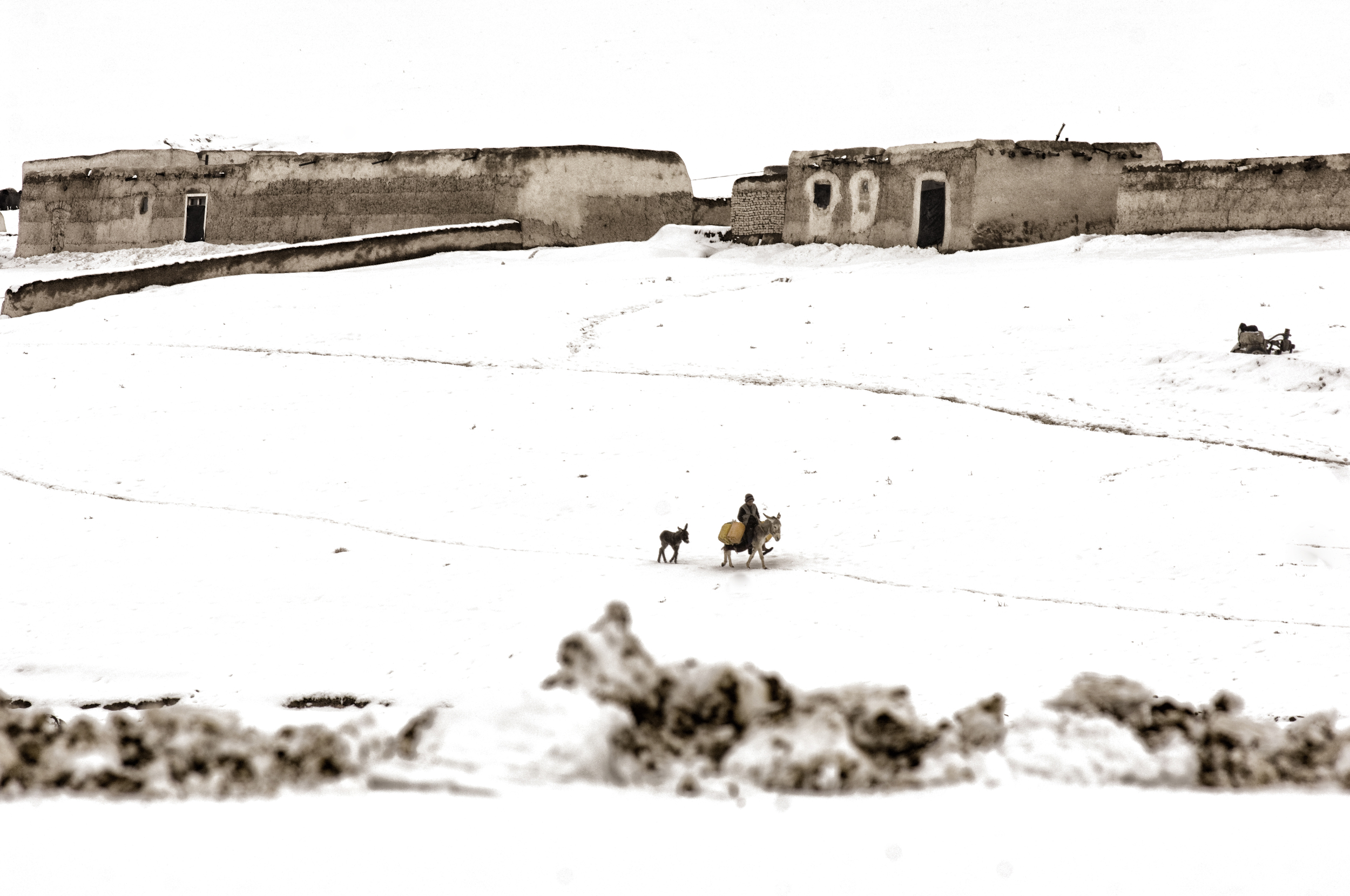 Nearly half the villages in western Afghanistan had been cut off from the major cities due to heavy snowfall, the cold snap hit the agricultural and livestock industry hard with more than 130,000 cattle perishing in the freezing temperatures Faryab Province, Afghanistan, February 14, 2008. (Photo/Mark Pearson)