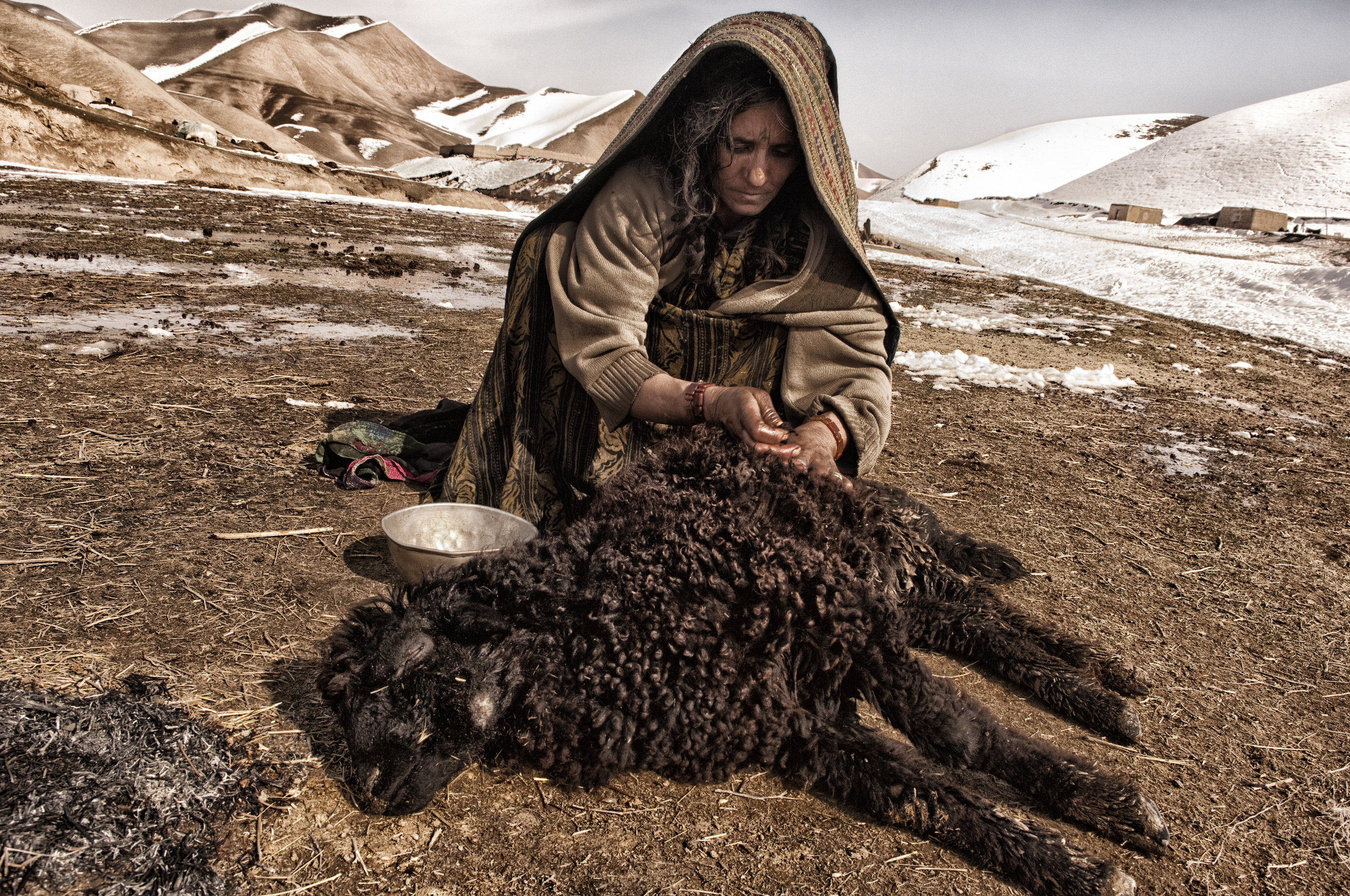 An Afghan woman cares for her dying sheep in the village of Qasabach Qala, Faryab Province, Northwest Afghanistan on Friday 15th February, 2008. (Photo/Mark Pearson)