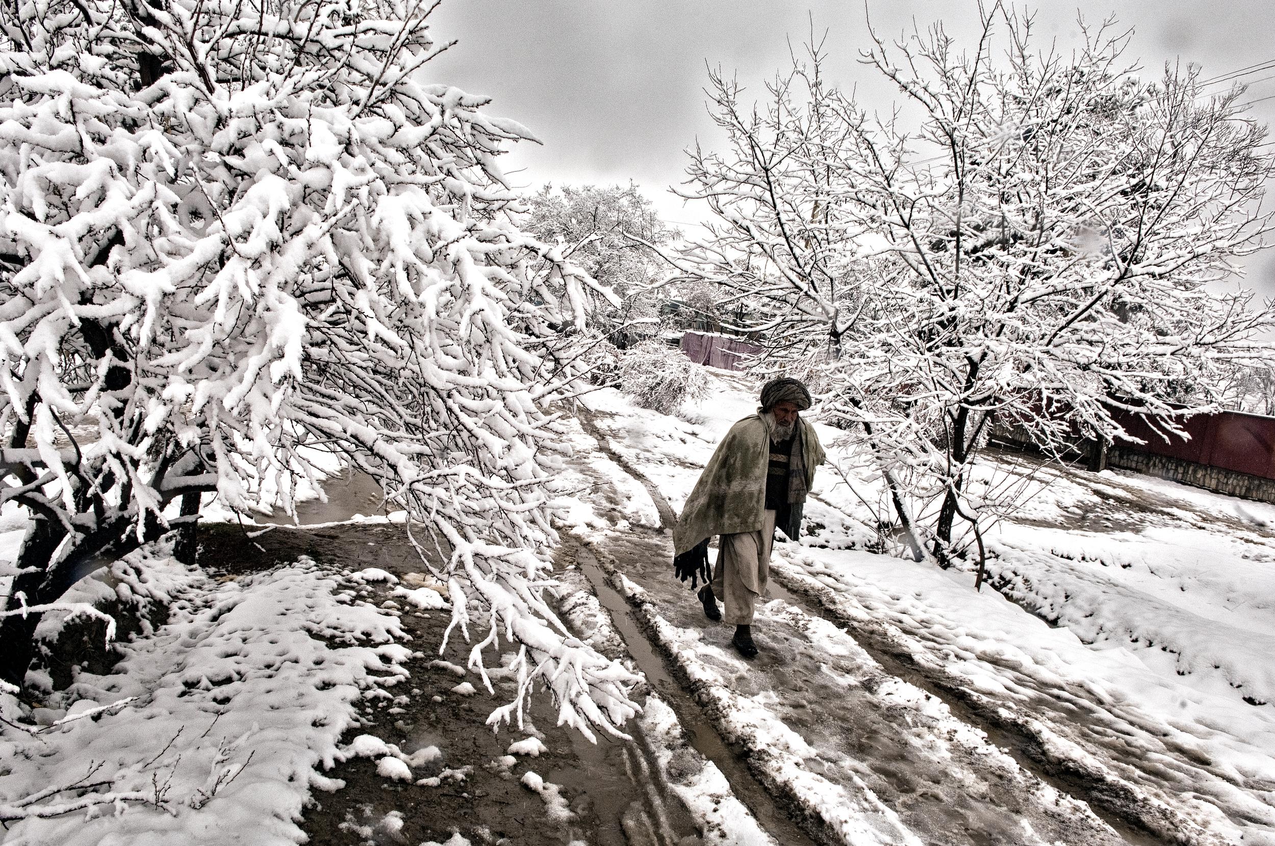 An elderly Afghan man walks through snow in Maymana, Faryab Province, Afghanistan, February 21, 2008. (Photo/Mark Pearson)