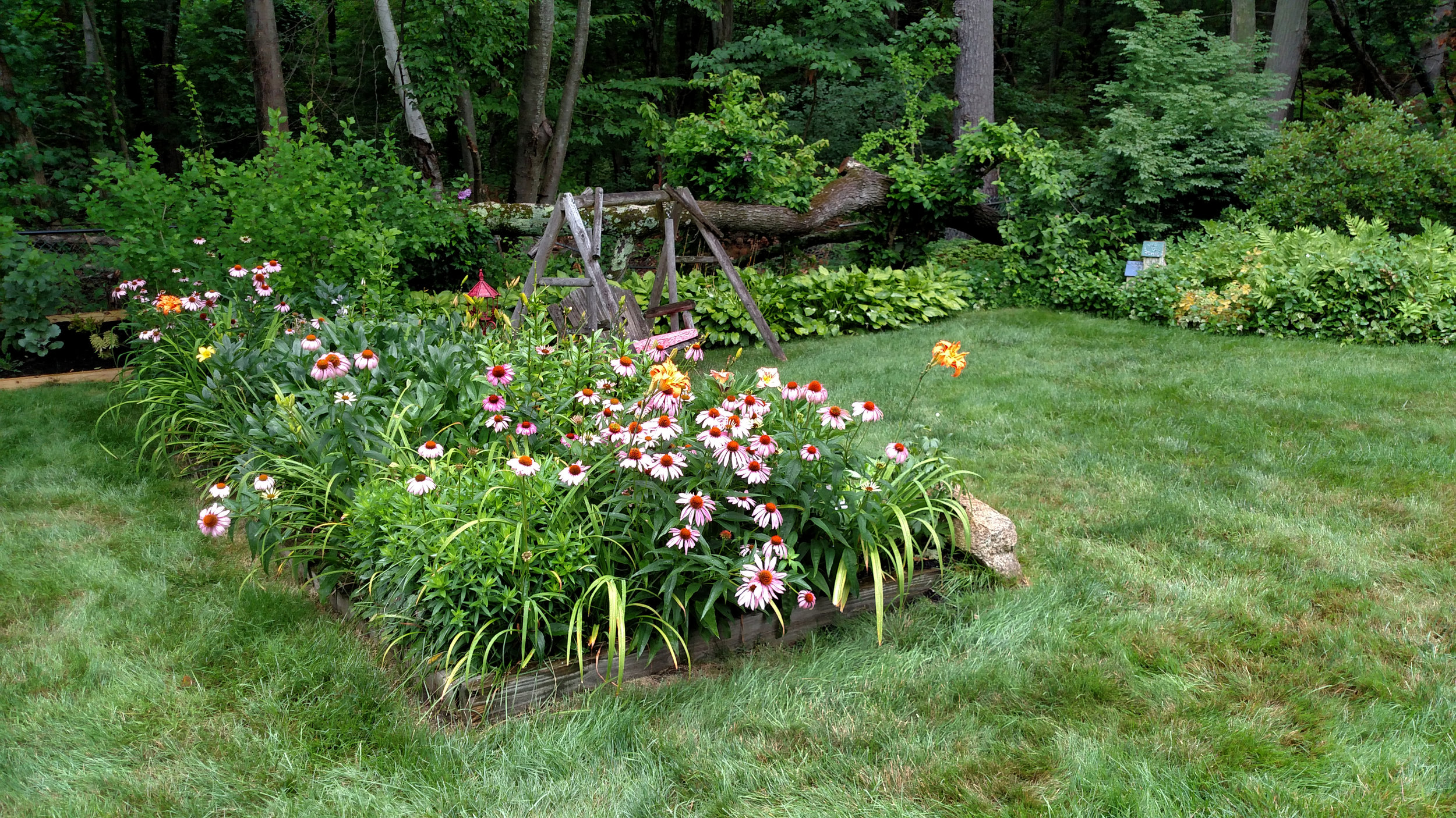 7-20-18 Shapiro Garden 8.jpg