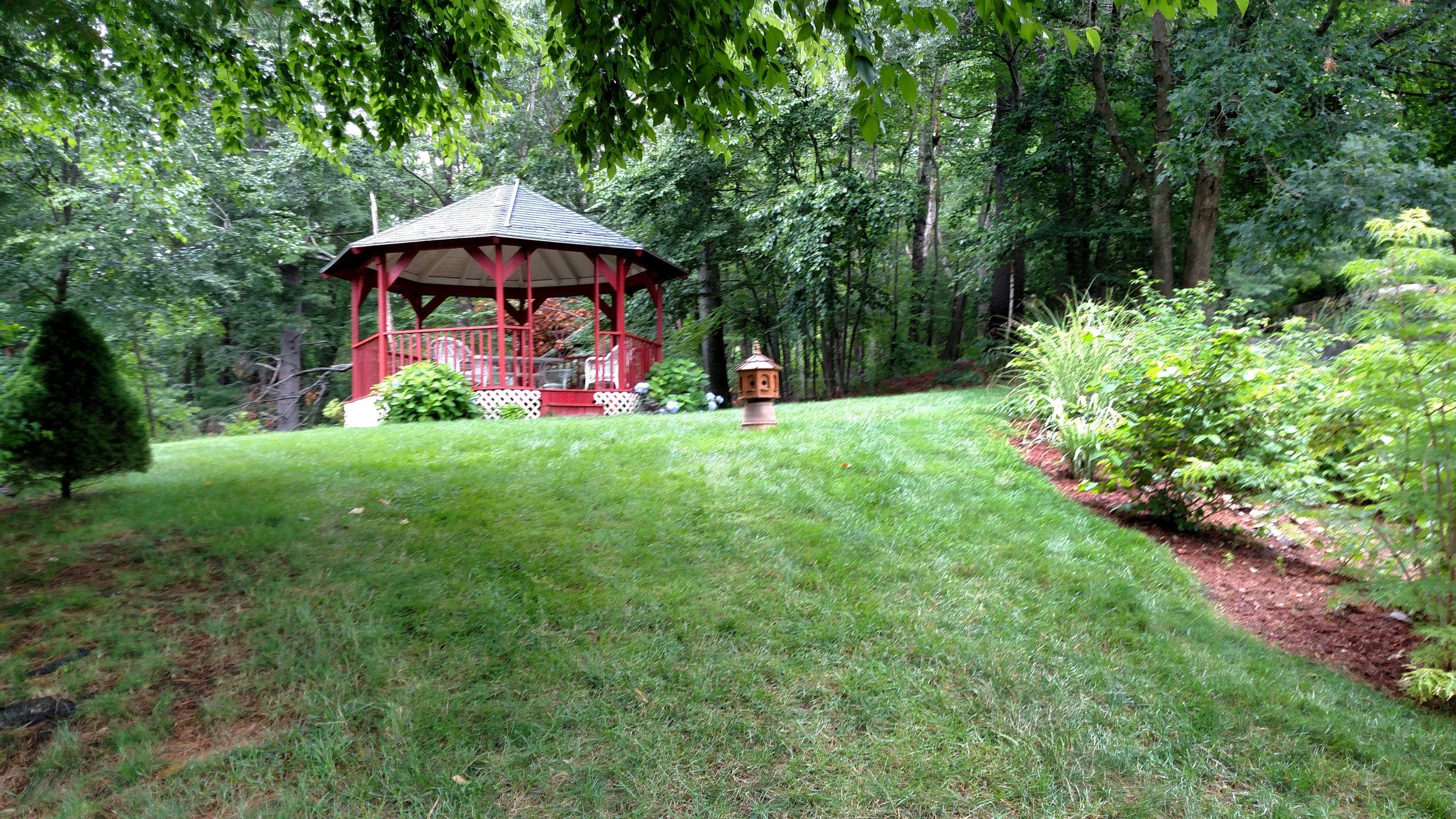 7-20-18 Shapiro Garden 18.jpg