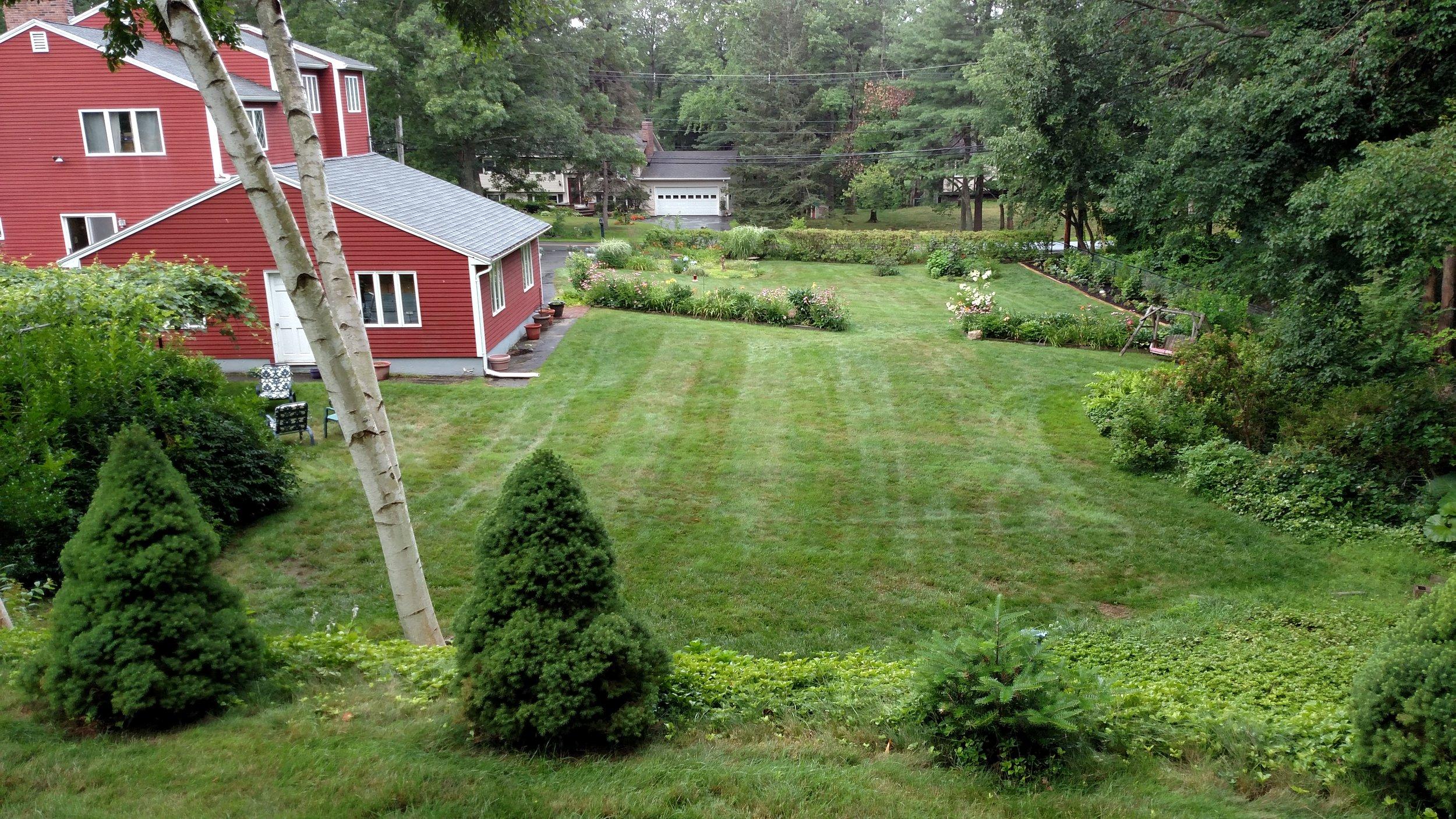 7-20-18 Shapiro Garden 20.jpg