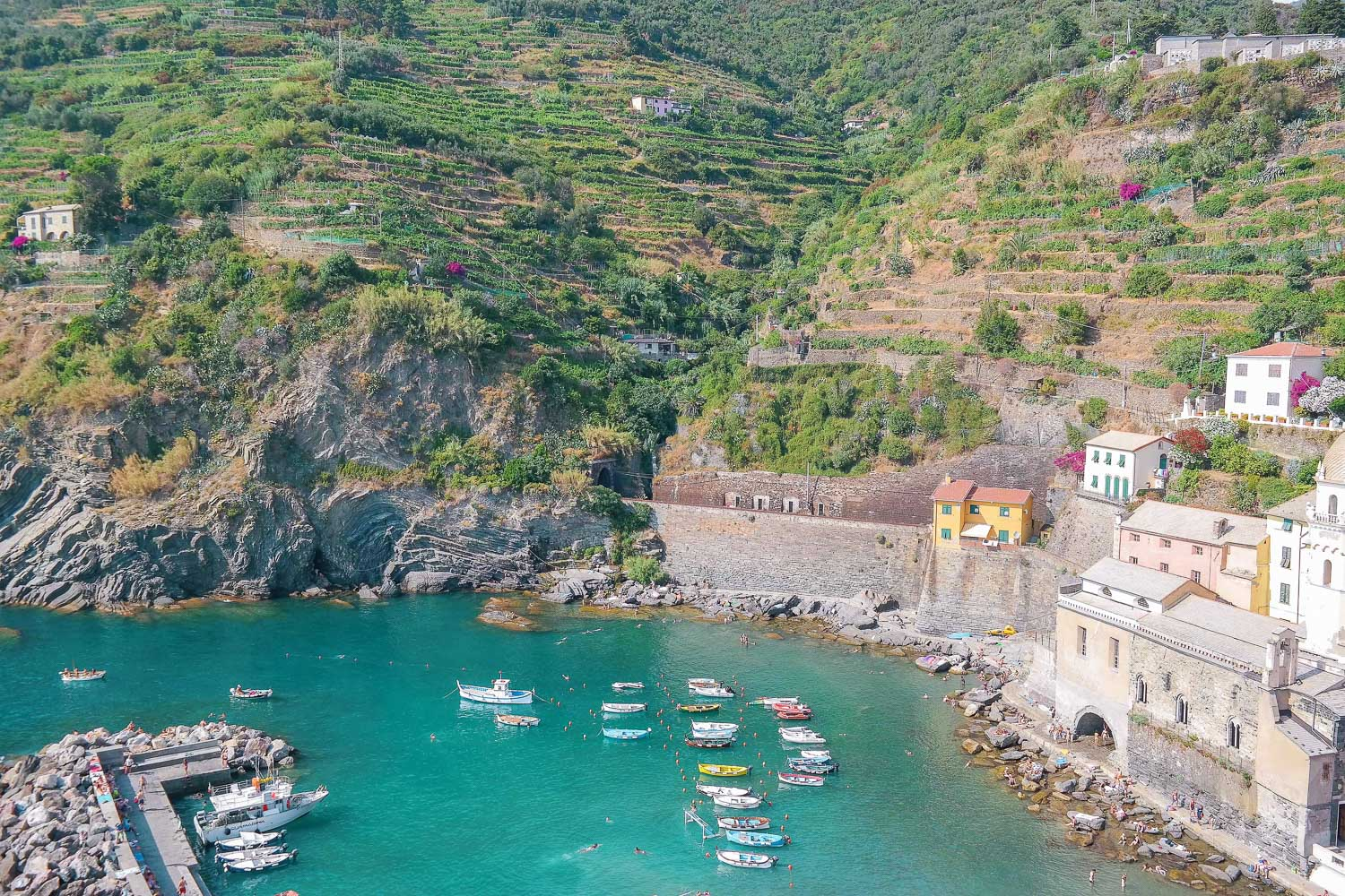 Looking down at the Vernazza, Italy harbor