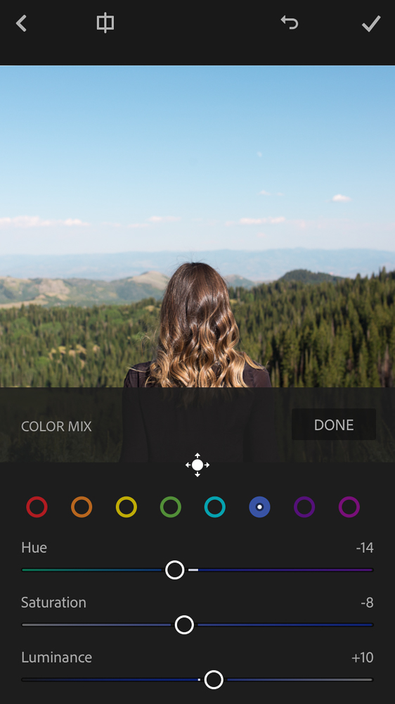 The interface of the Lightroom for Mobile app
