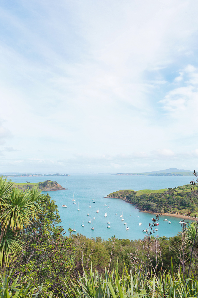 Everything you need to know about wine tasting on Waiheke Island near Auckland in New Zealand