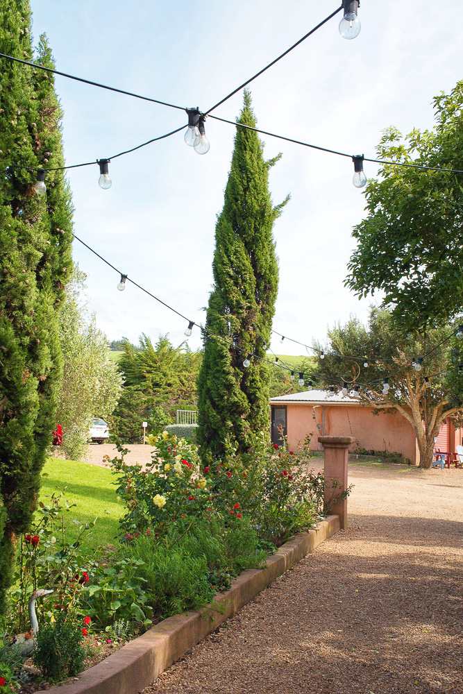 The gorgeous grounds of Casita Miro