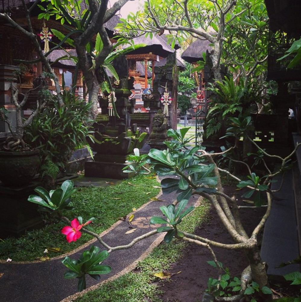 Travel influencer @elisedarma's favorite place of all time: Ubud, Bali
