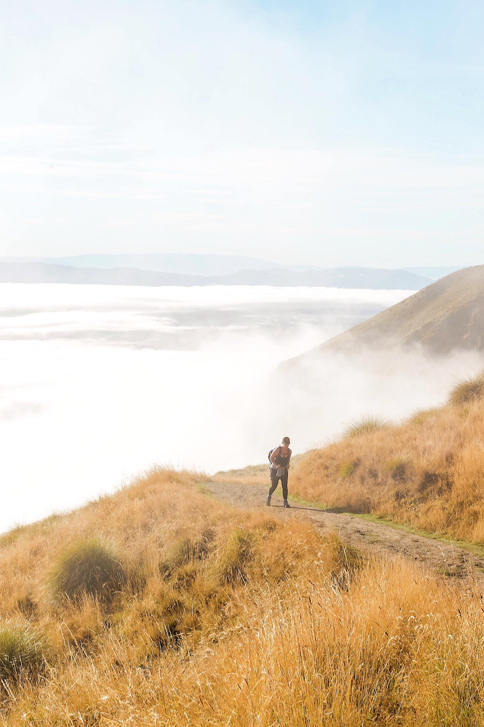 Above the clouds in New Zealand during the Roys Peak tramp