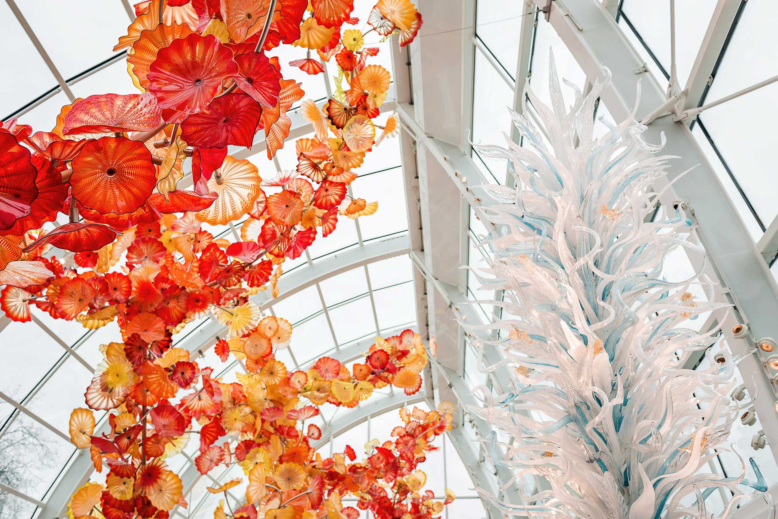 The glasshouse at Chihuly Garden and Glass in Seattle