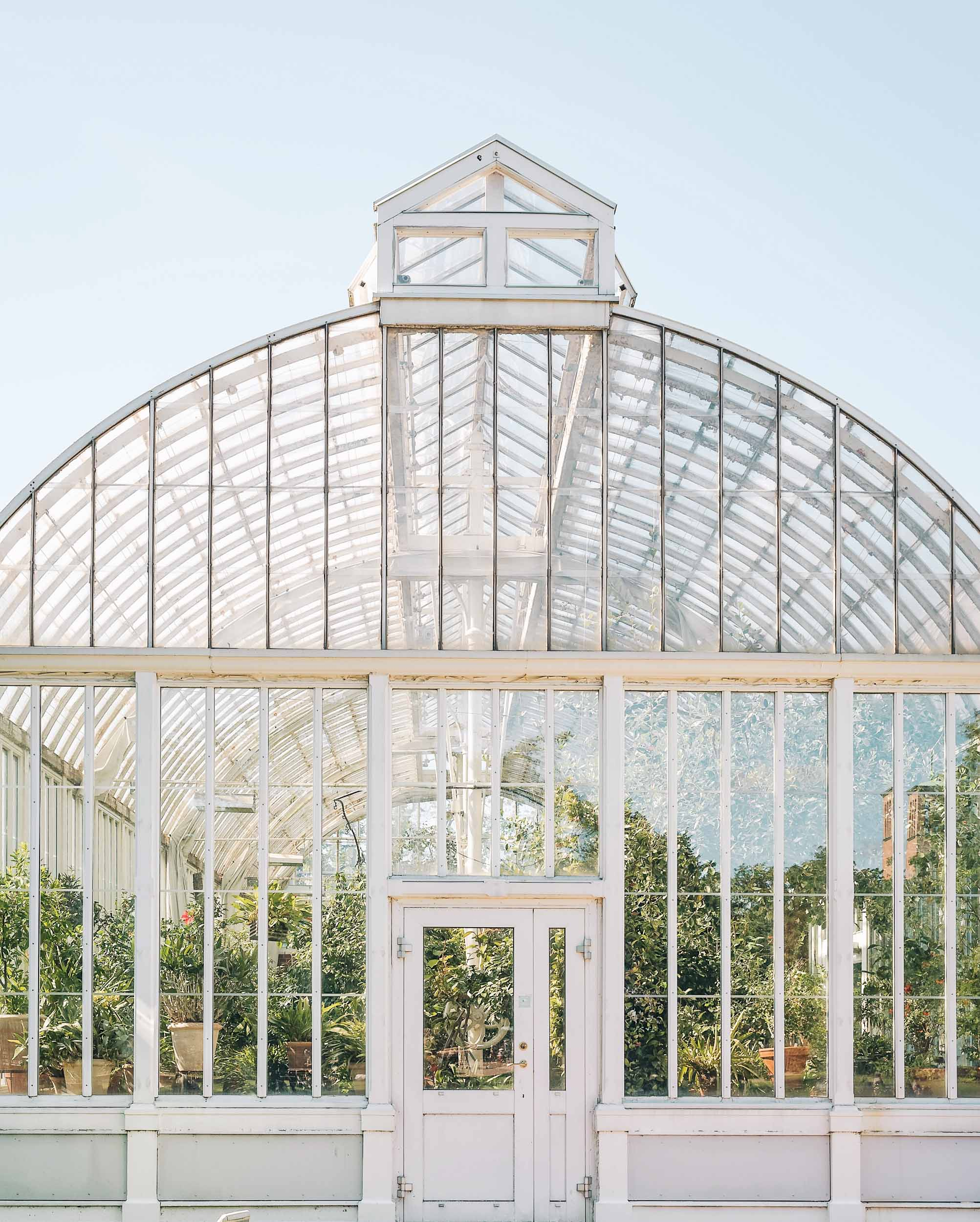 Visit the Palm House at Garden Society of Gothenburg