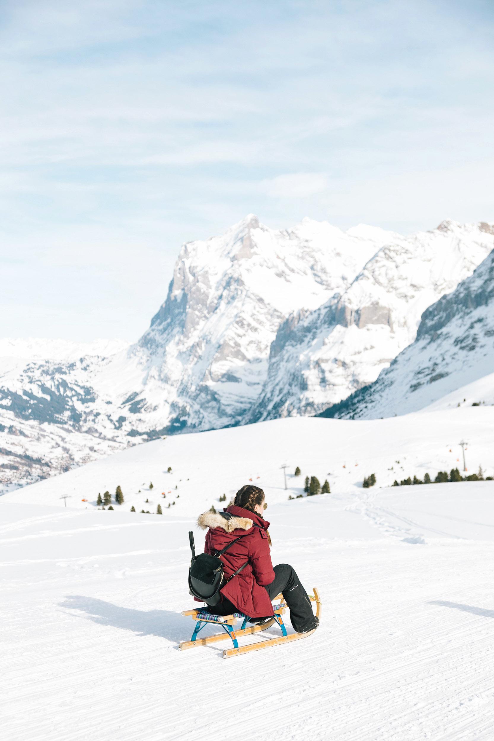 The most fun winter adventure in Switzerland - sledging!