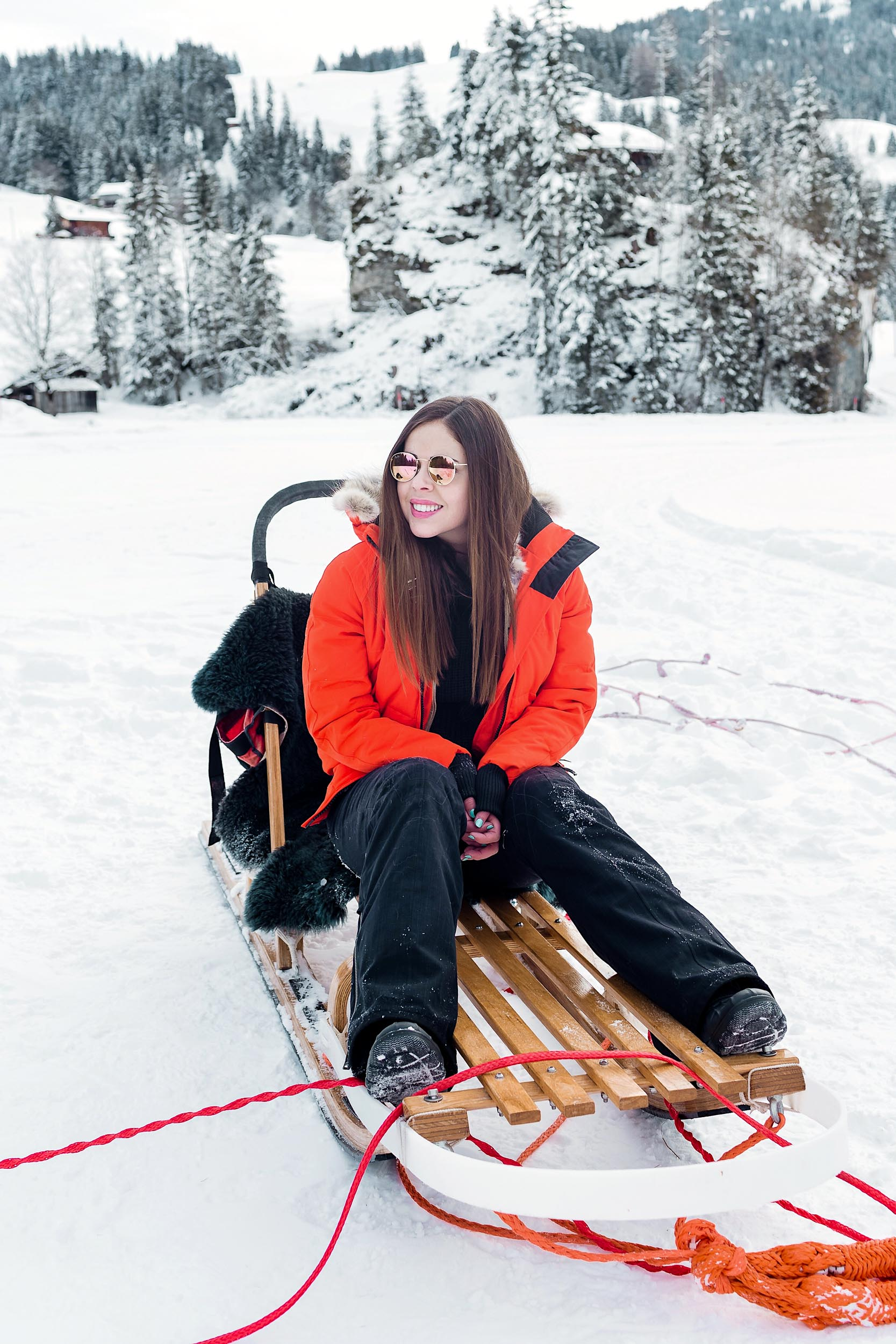 Dog sledding in Switzerland - the perfect winter adventure!