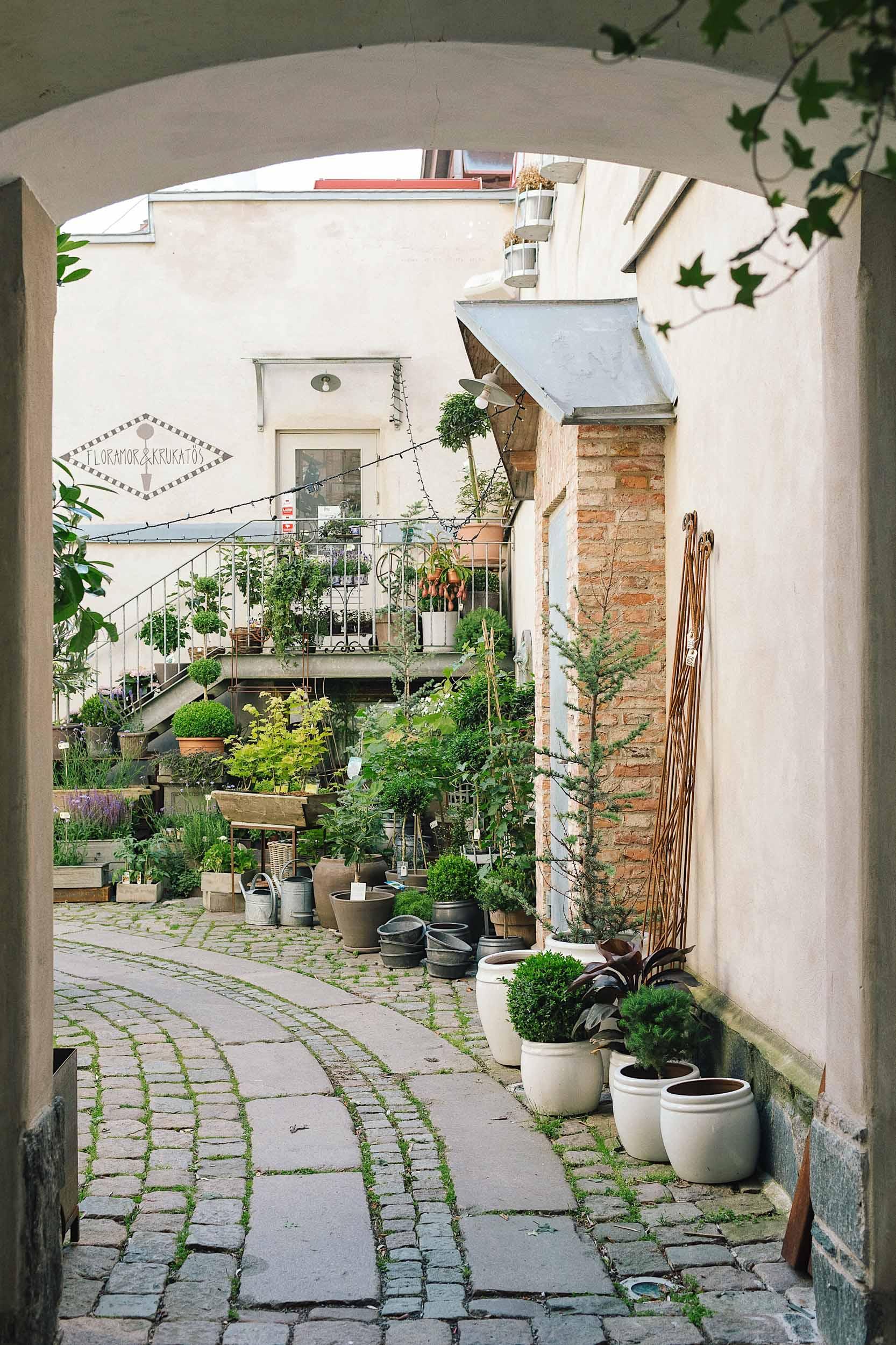 The back courtyard at da Matteo