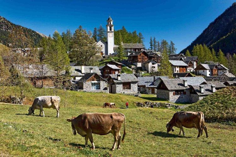 Bosco Gurin, an old Walser settlement in a side valley of Valle Maggia in Canton Ticino. Copyright by: Switzerland Tourism