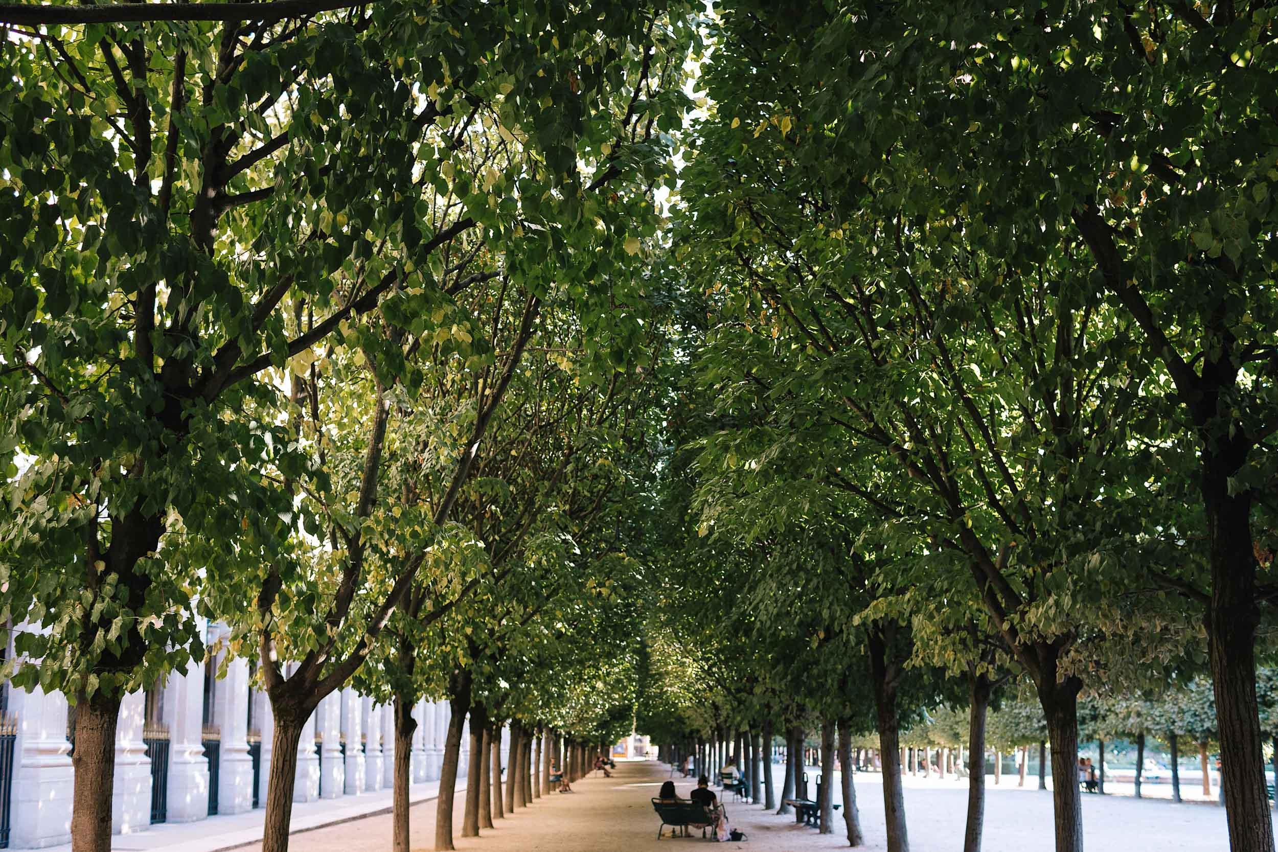 Jardin du Palais Royale in Paris' 1st Arr.