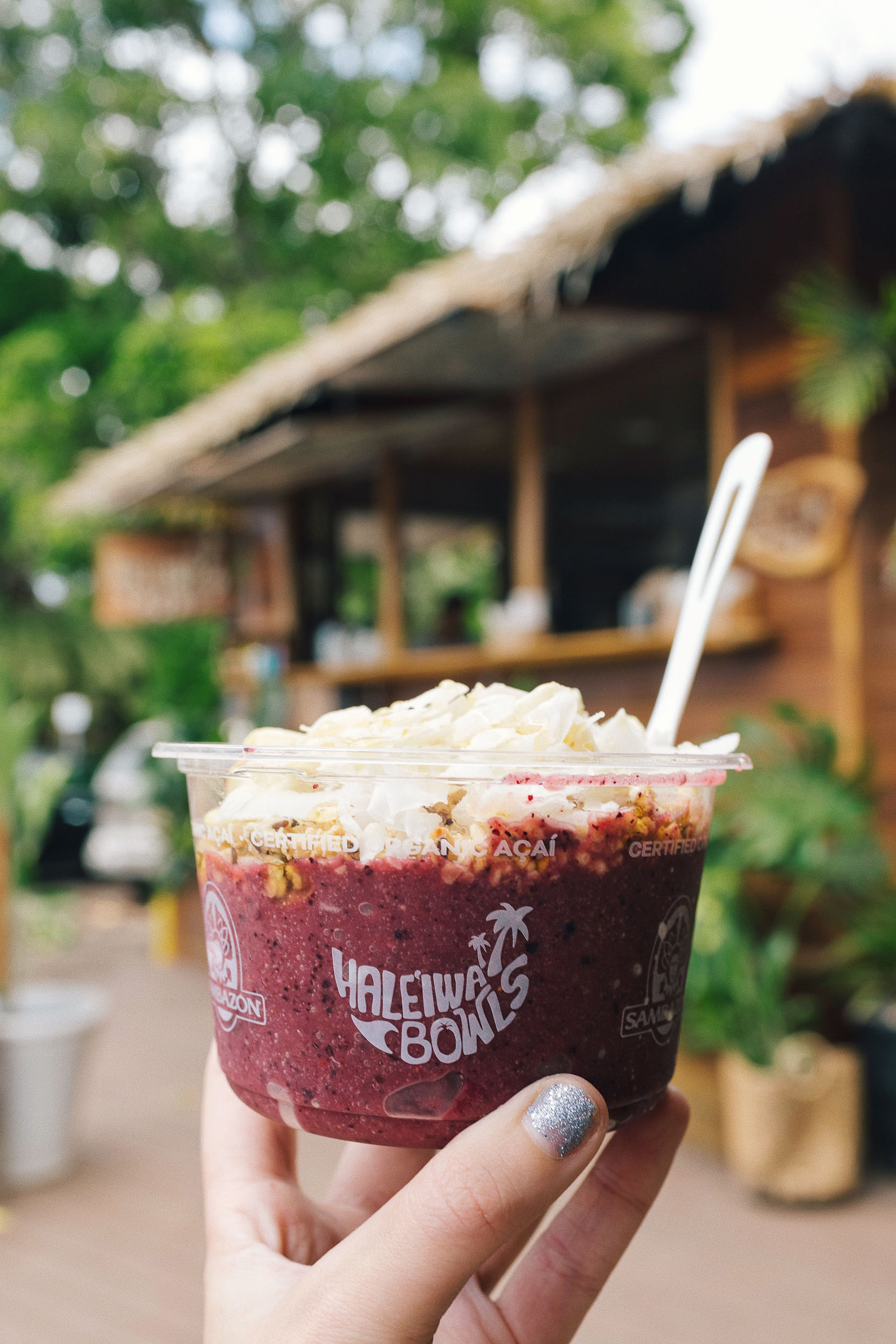 Most Instagrammable places in Oahu: Haleiwa on the North Shore