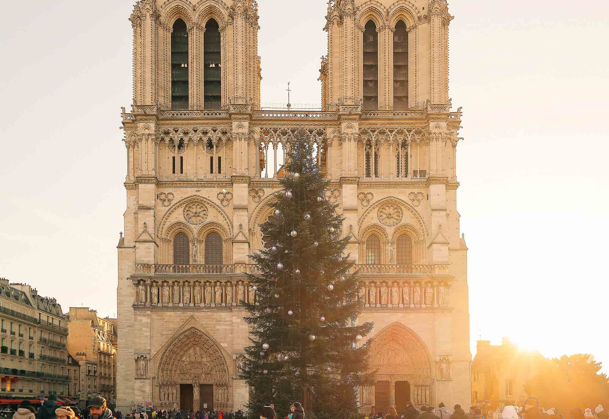 Paris in a week itinerary: don't miss Notre Dame cathedral