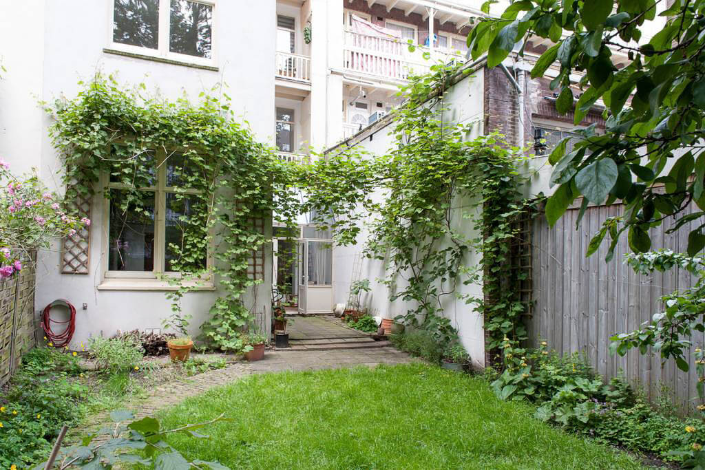 A beautiful and cheap Airbnb Amsterdam