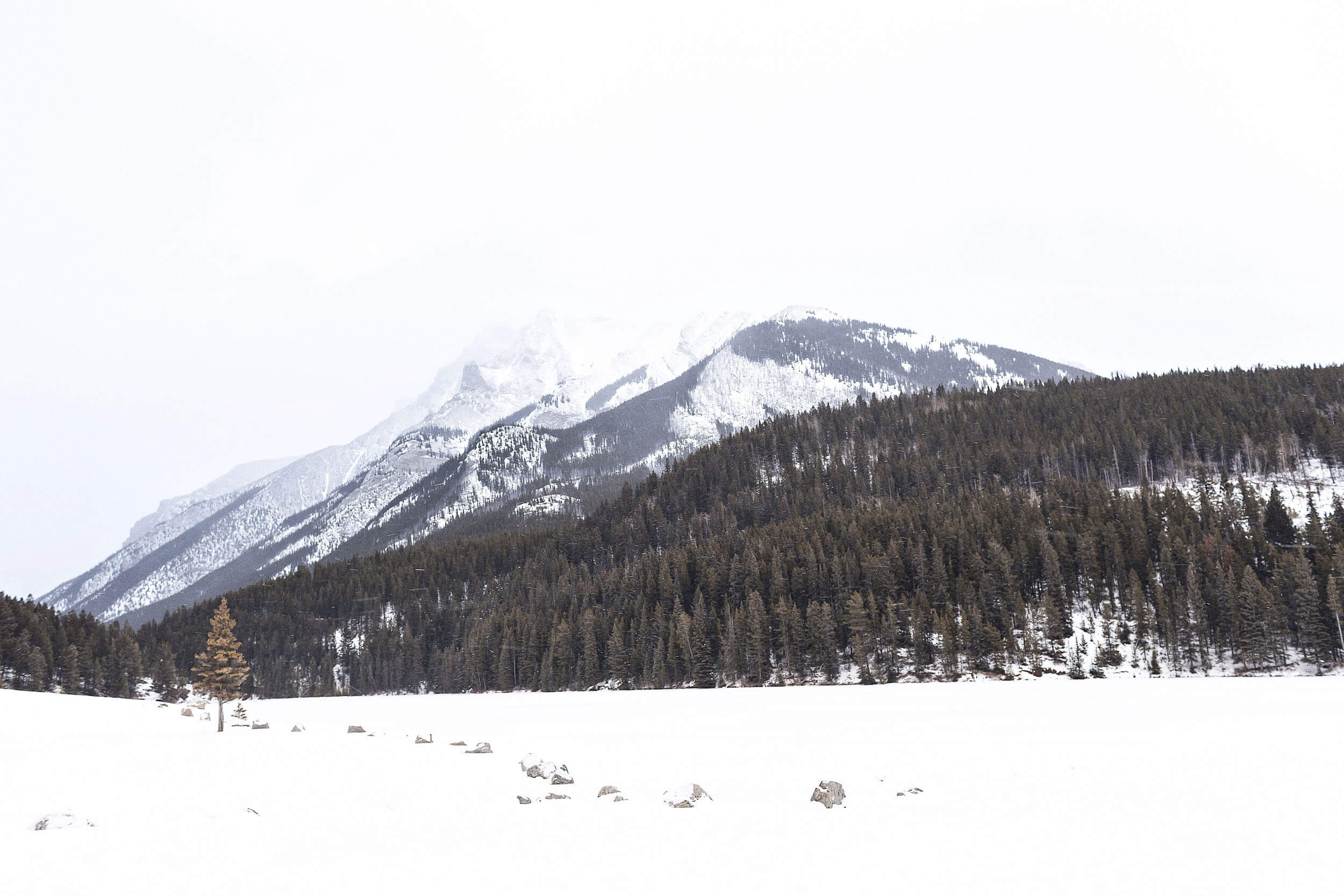 ckanani-banff-winter-a-guide-to-visiting-81.jpg