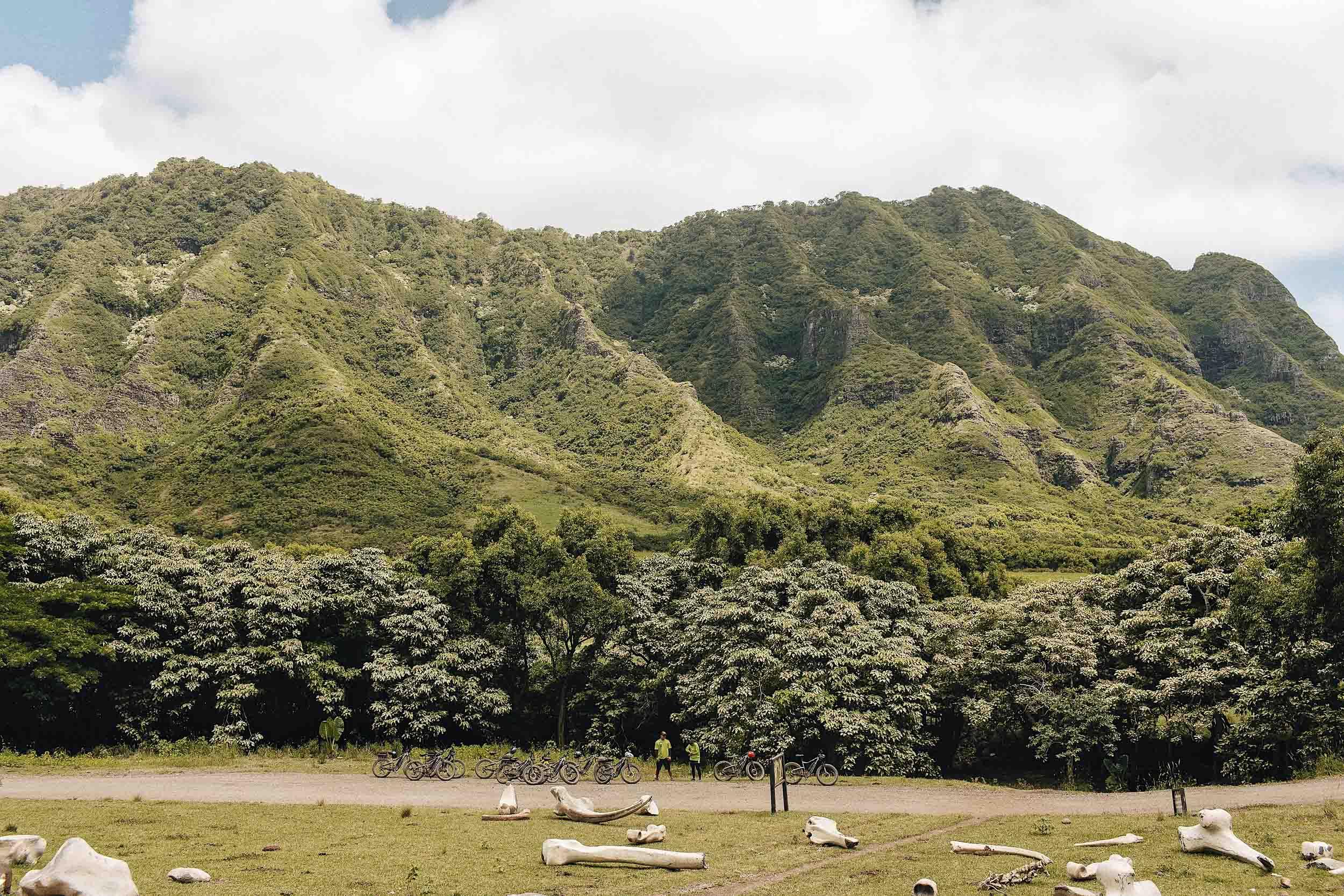 ckanani-kualoa-ranch-69.jpg