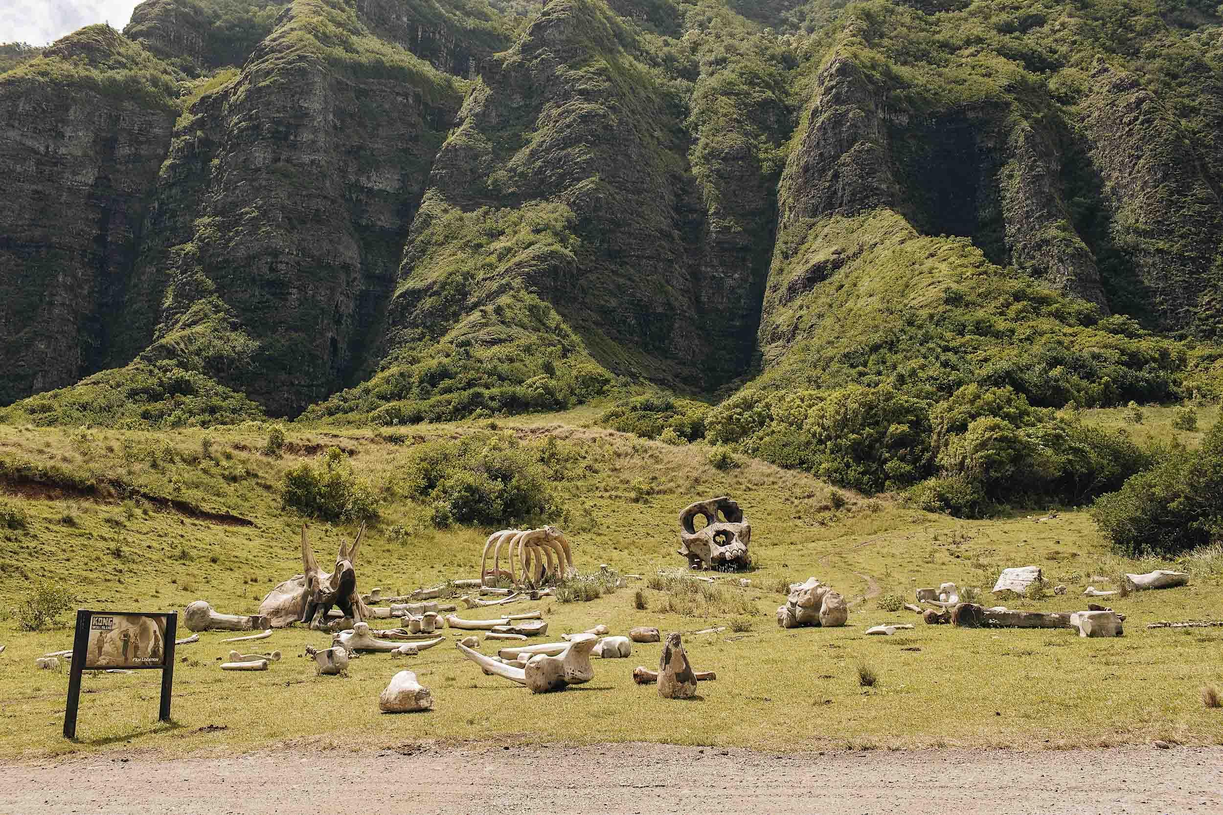 ckanani-kualoa-ranch-70.jpg