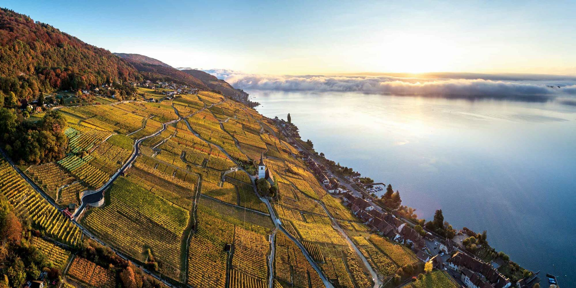 Morning mood over the vineyard of Ligerz with view towards Biel. Copyright by: Switzerland Tourism