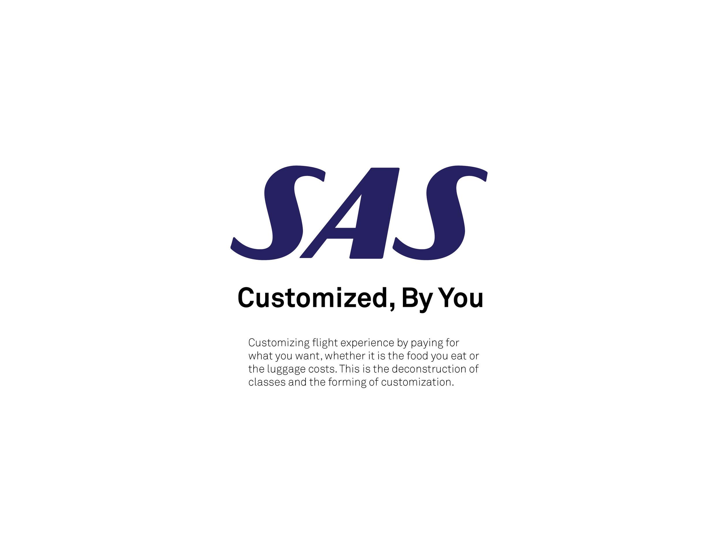 SAS WEB BRANDINGX3.jpg
