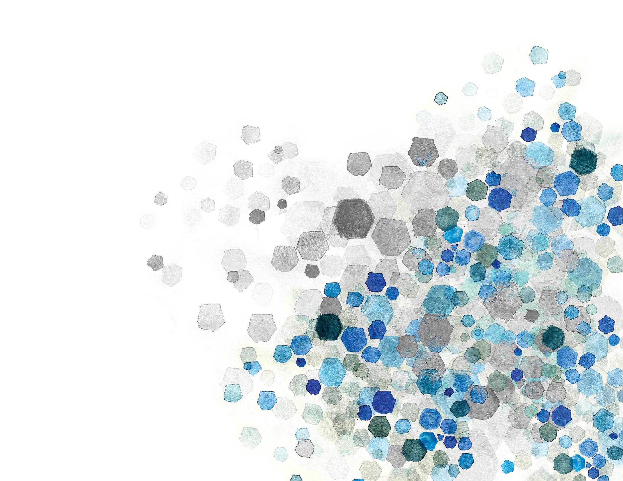 SAS WEB BRANDINGX2.jpg
