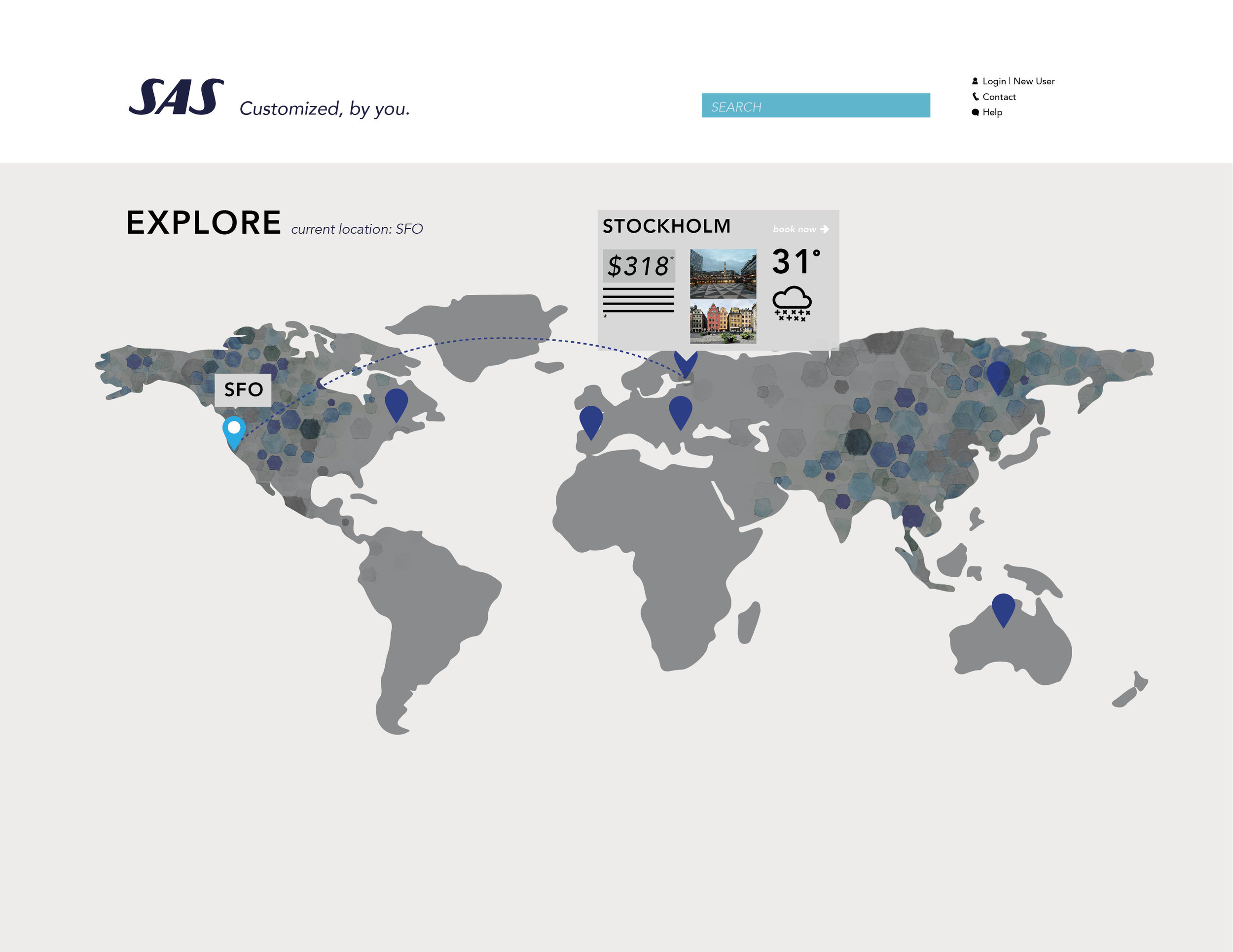 SAS WEB BRANDINGX12.jpg