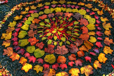 by Andy Goldsworthy
