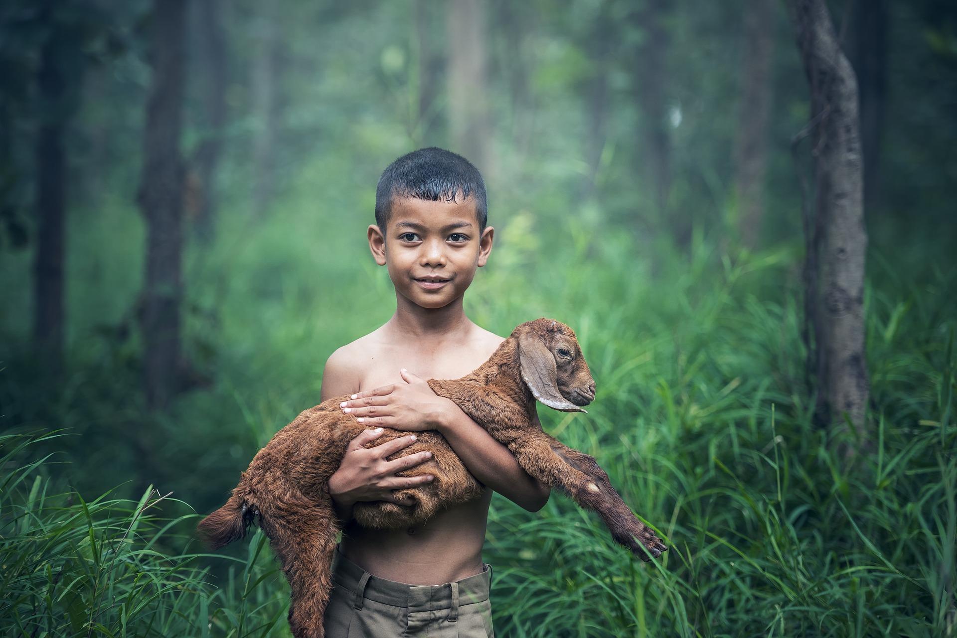Boy & Goat.jpg