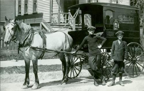 horse & cart.png