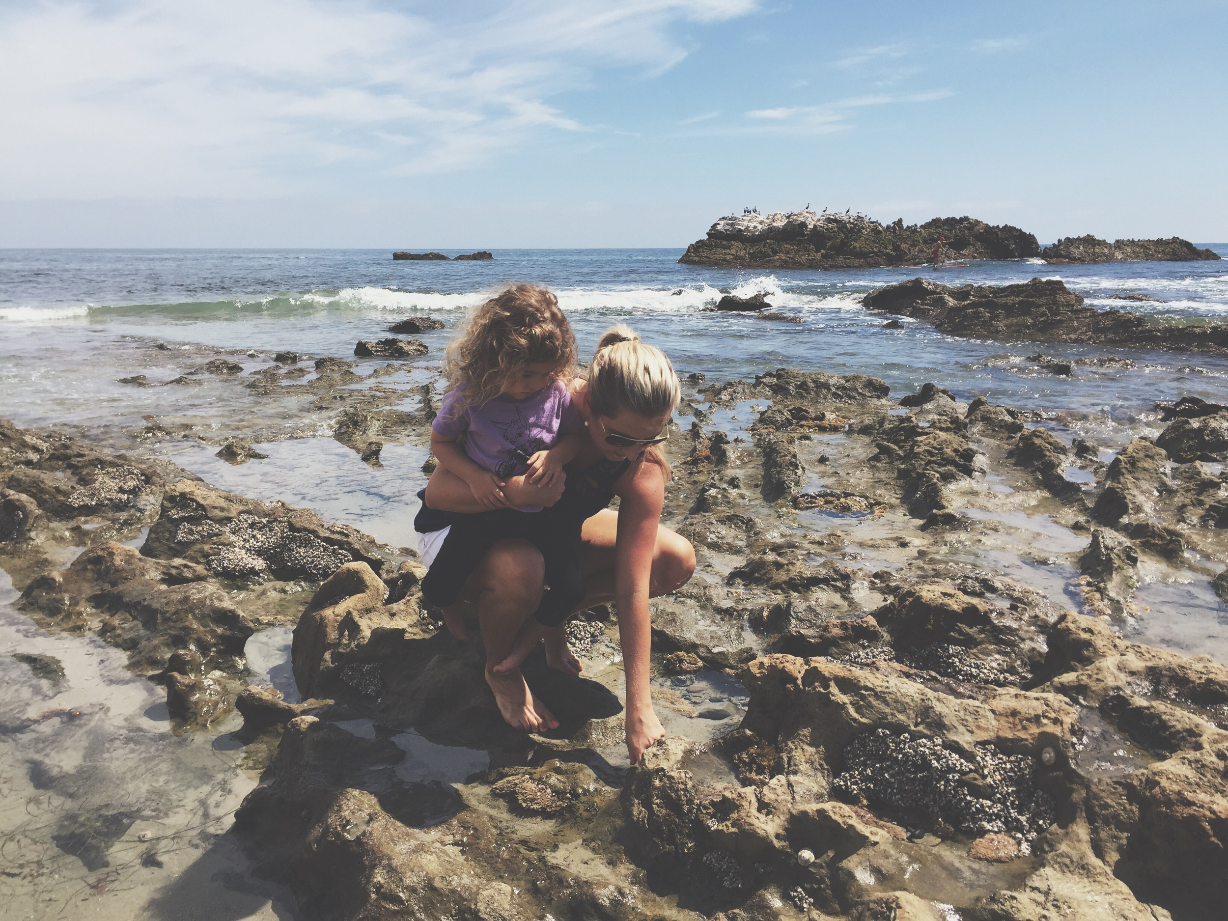 tide pools in laguna beach