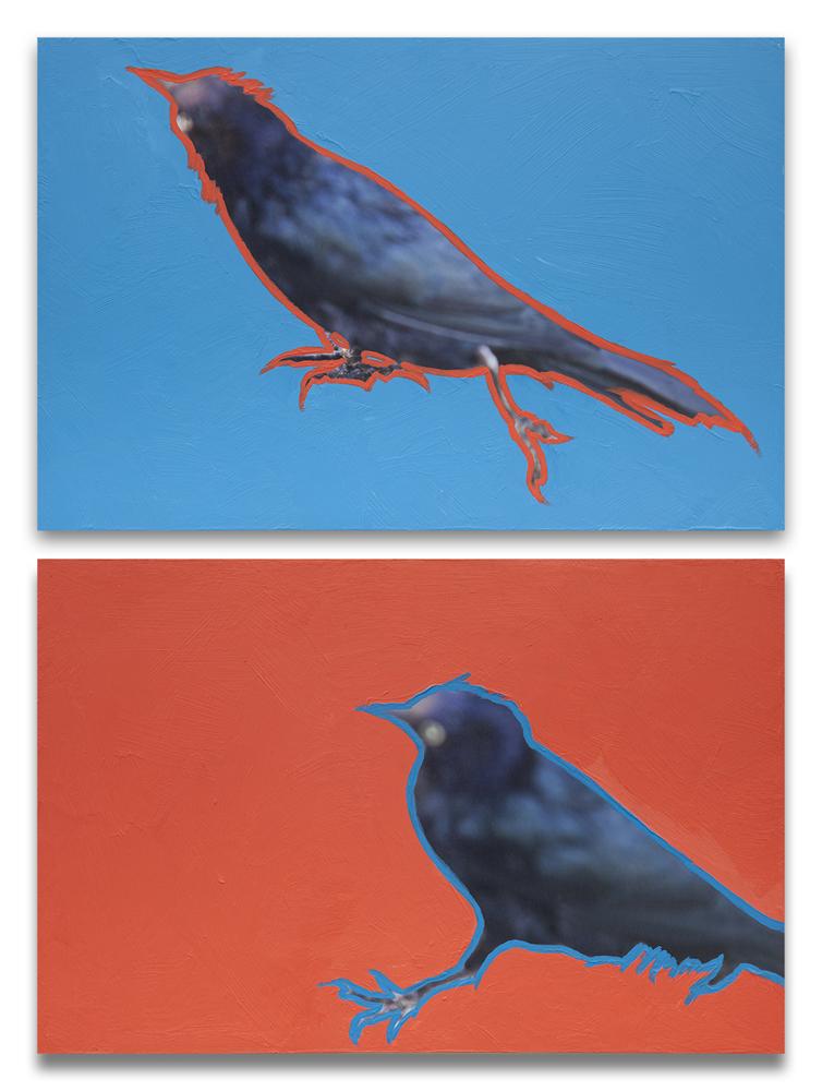 both_birds_web.jpg