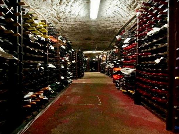 Antico Arco wine cellar.jpg