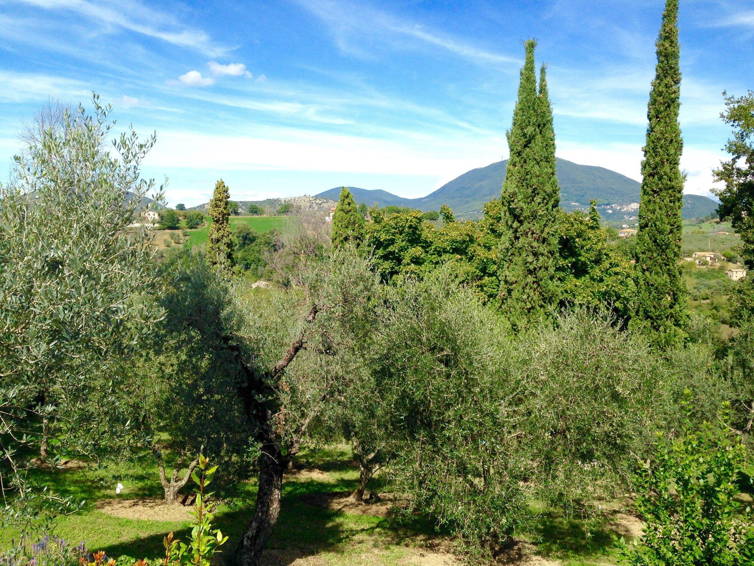 Sabina green hills.jpg