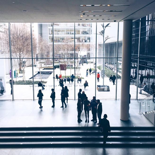 MOMA | NEW YORK, NY.