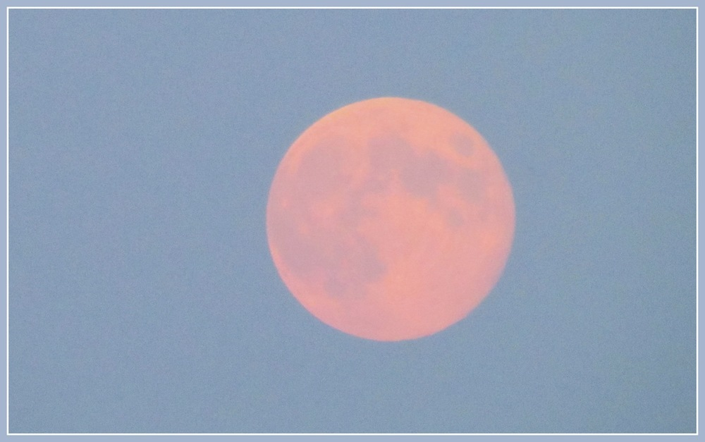 45d75-pinkmoon.jpg